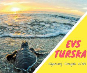 EVS Turska